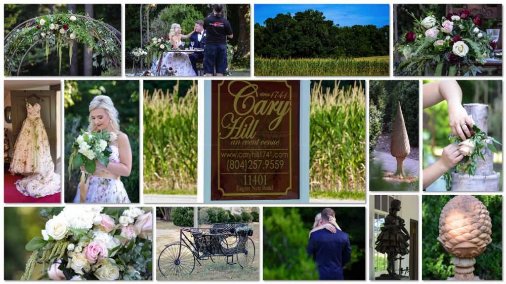 Cary Hill Collage