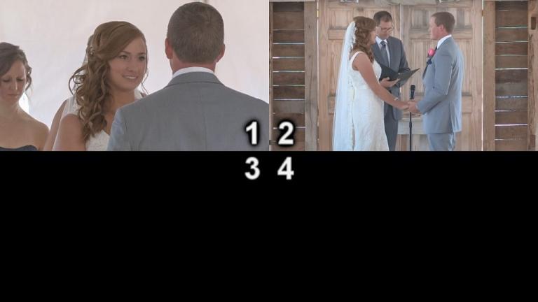 multicamera example